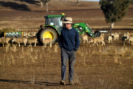 Despair as crippling drought hammers Australian farmers