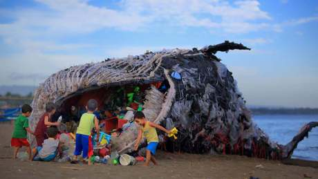 Huge amount of plastic found inside dead pregnant whale | Society